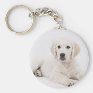 Golden Retriever Puppy Keychain
