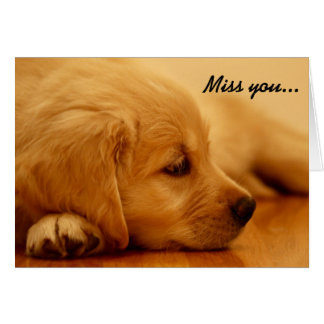 Golden Retriever Puppy Melancholy I Card