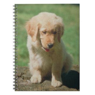 Golden Retriever Puppy Notebook