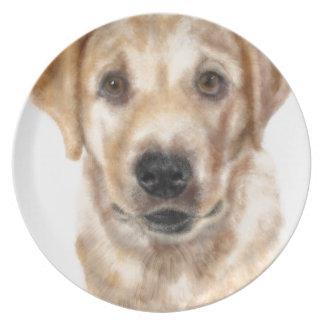 Golden retriever puppy plate
