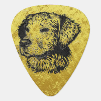 Golden retriever puppy portrait in black and gold guitar pick