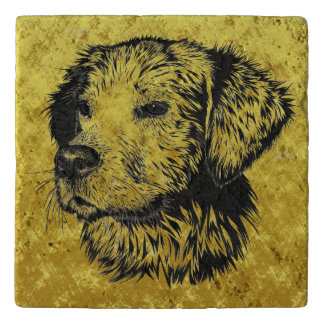 Golden retriever puppy portrait in black and gold trivet