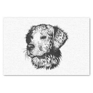 Golden retriever puppy portrait in black and white tissue paper