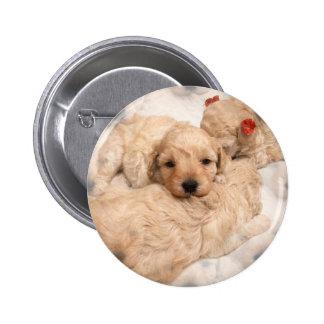 Golden Retriever Puppy Round Button