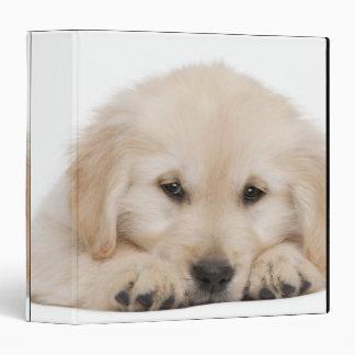 Golden retriever puppy vinyl binders