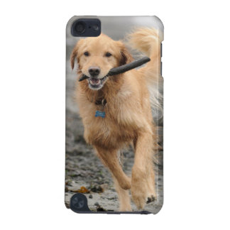 Golden Retriever Running With  Stick In Mouth iPod Touch 5G Case