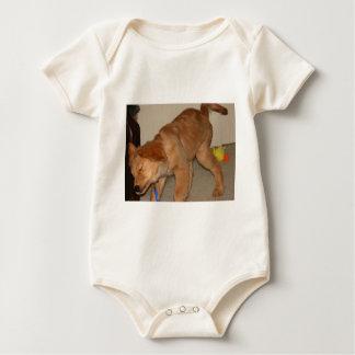 Golden Retriever Shaking It Off Baby Bodysuit