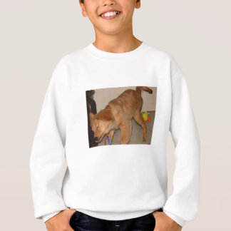 Golden Retriever Shaking It Off Sweatshirt