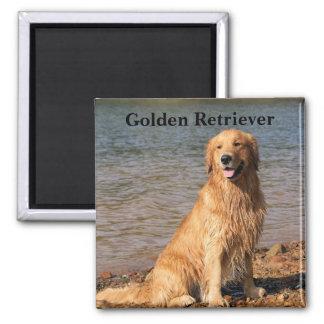 Golden Retriever Sitting Text Square Magnet