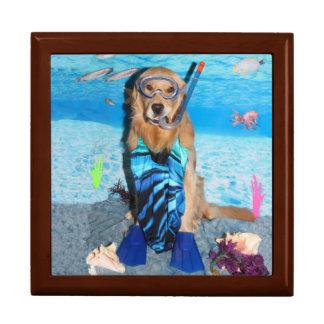 Golden Retriever Snorkeler Gift Box
