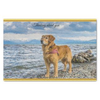Golden Retriever standing on the blue ocean rocky Tissue Paper