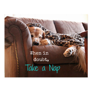 Golden Retriever Take a Nap Postcard
