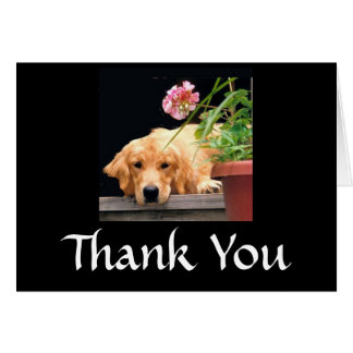 Golden Retriever Thank You Card Flower
