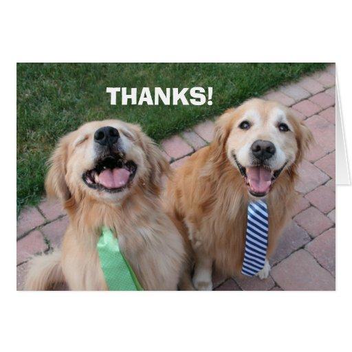 Golden Retriever Thank You Greeting Card | Zazzle