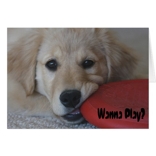 Golden Retriever Wanna Play... Card
