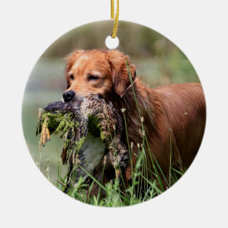 Golden Retriever with duck Ornament