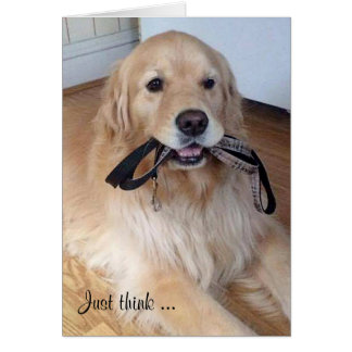 golden retriever with leash in mouth card