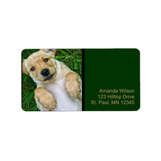 Golden Retriever Yellow Lab Puppy Address Labels