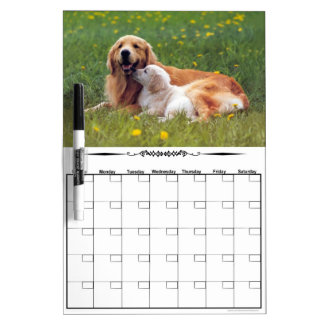 Golden Retrievers Dry Erase Calendar Board