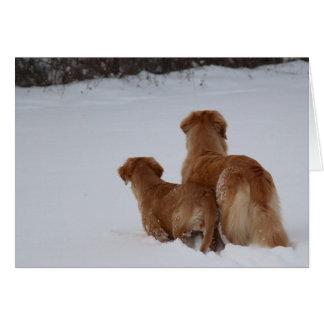 Golden Retrievers Watching Card