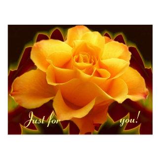Golden rose on stylised leaf postcard