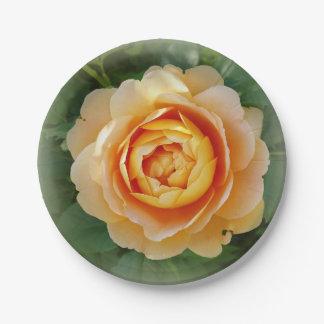 Golden rose paper plate