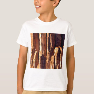 golden sandstone pillars T-Shirt