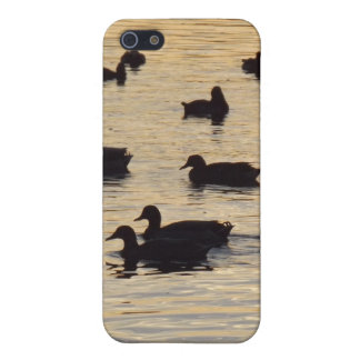Golden Shimmering Pond Ducks and Geese Case For iPhone 5/5S
