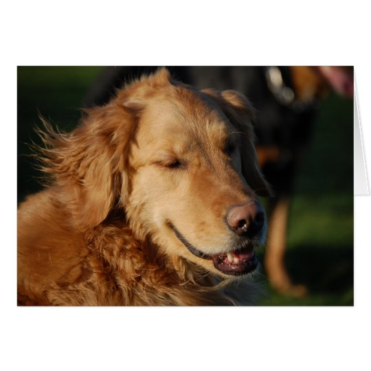 Golden Smile Card