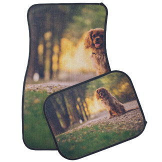 Golden Spaniel dog panting in the sun on path Car Mat