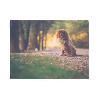 Golden Spaniel dog panting in the sun on path Doormat