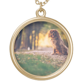 Golden Spaniel dog panting in the sun on path Gold Plated Necklace