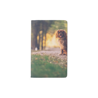 Golden Spaniel dog panting in the sun on path Pocket Moleskine Notebook