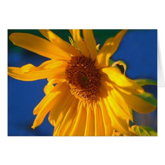 Golden Sunflower Greeting Card
