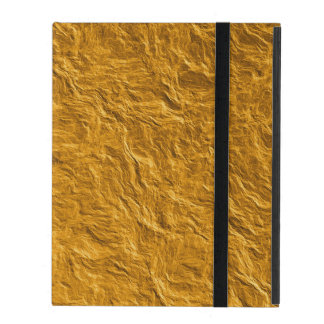 Golden texture iPad folio case