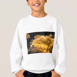 Golden_Thunderhead Sweatshirt