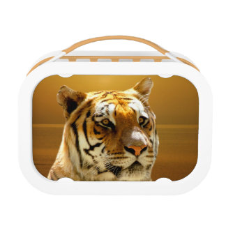 Golden Tiger Lunch Box
