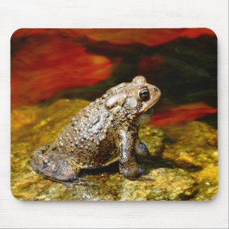 Golden Toad with Red Lily Pads Mouse Pad