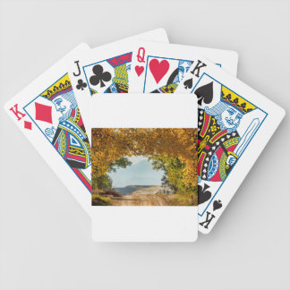 Golden Tunnel Of Love Bicycle Playing Cards