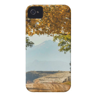 Golden Tunnel Of Love iPhone 4 Case-Mate Case