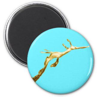 Golden Weedy Sea Dragon Magnet