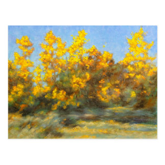 Golden Yellow Fall Trees Postcards