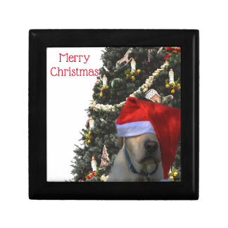 Golden Yellow Labrador in Santa Hat Christmas Gift Box
