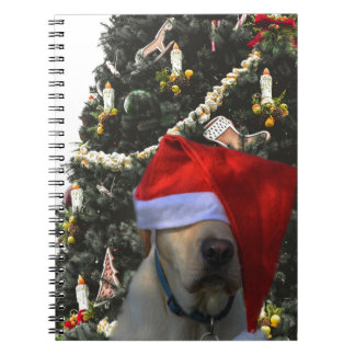 Golden Yellow Labrador in Santa Hat Christmas Notebooks