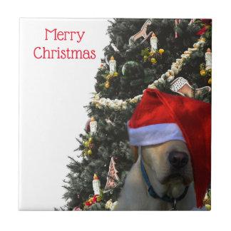 Golden Yellow Labrador in Santa Hat Christmas Tile