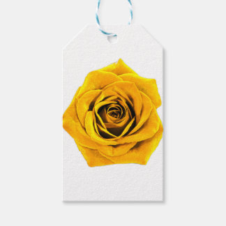 Golden Yellow Rose 20171027b Gift Tags