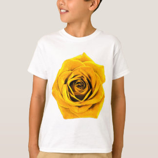 Golden Yellow Rose 20171027b T-Shirt