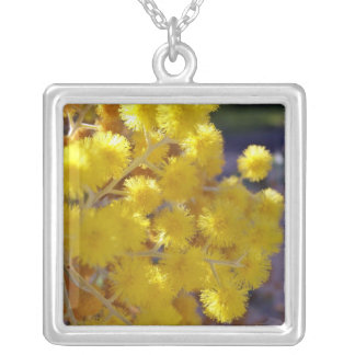Golden Yellow wattle up close Silver Plated Necklace