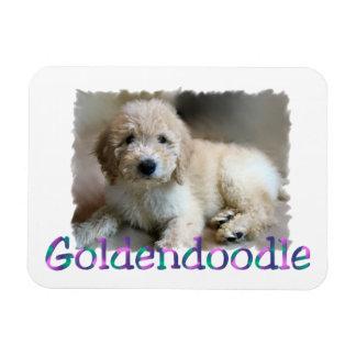 Goldendoodle Art Magnet