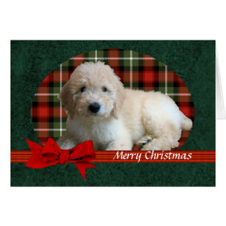 GoldenDoodle Christmas Holiday Customizable Card